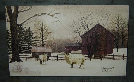 CT231 Winter Coat Canvas-