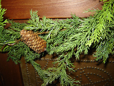 Ct342 Prickly Pine Garland