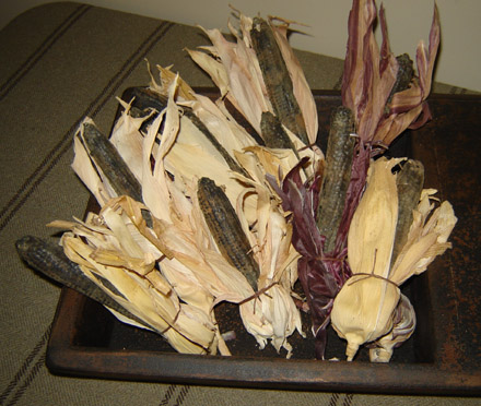 FH124 Wax Corn in Husks-